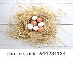 chicken eggs  eggs in the nest | Shutterstock . vector #644234134