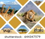 travel concept with photos... | Shutterstock . vector #644347579