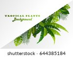 tropical plants. invitation ... | Shutterstock .eps vector #644385184