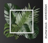 palm leafs background concept | Shutterstock . vector #644403064