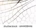 close up wings dragonfly macro... | Shutterstock . vector #644408446