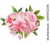 hand painted watercolor bouquet ... | Shutterstock . vector #644542234
