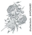 ink hand drawn illustrations of ... | Shutterstock .eps vector #644564680