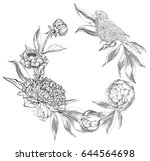 ink hand drawn illustrations of ... | Shutterstock .eps vector #644564698