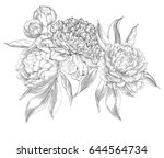 ink hand drawn illustrations of ... | Shutterstock .eps vector #644564734