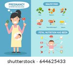 pregnancy nutrition food... | Shutterstock .eps vector #644625433