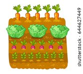 vegetable garden. vector... | Shutterstock .eps vector #644627449