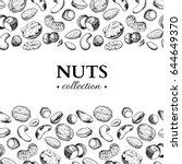 nuts vector vintage... | Shutterstock .eps vector #644649370