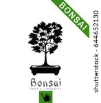 bonsai tree in bonsai ceramic...   Shutterstock .eps vector #644652130