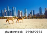 the camels on jumeirah beach... | Shutterstock . vector #644690998