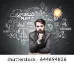 portrait of a serious bearded... | Shutterstock . vector #644694826