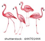 Watercolor Pink Flamingos Set