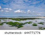walking trips around the... | Shutterstock . vector #644771776