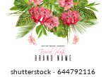 vector botanical composition... | Shutterstock .eps vector #644792116