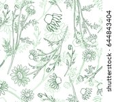 chamomile wild field flower... | Shutterstock .eps vector #644843404