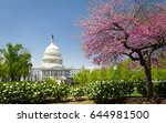 the us capitol with blossoming... | Shutterstock . vector #644981500