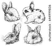 vintage graphic rabbit print.... | Shutterstock .eps vector #644999836