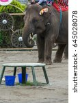 elephant | Shutterstock . vector #645028078