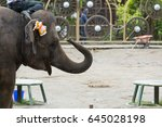 elephant | Shutterstock . vector #645028198