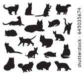 breeds of cats vector... | Shutterstock .eps vector #645035674