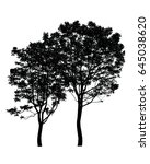 silhouette of trees isolated on ... | Shutterstock . vector #645038620
