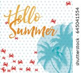 hello summer vector card | Shutterstock .eps vector #645041554