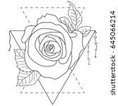 rose flower  detailed vector... | Shutterstock .eps vector #645066214
