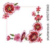wildflower carnation flower... | Shutterstock . vector #645073060