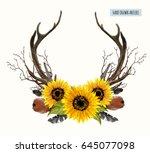 beautiful vector set of horns.... | Shutterstock .eps vector #645077098