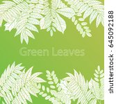 green leaves background | Shutterstock .eps vector #645092188