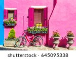 house with pink wall. colorful... | Shutterstock . vector #645095338