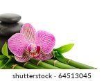 Pink Orchid And Stones On The...