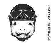 Portrait Of Piggy With Vintage...