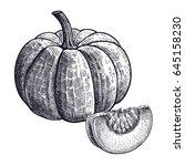 pumpkin. hand drawing of... | Shutterstock .eps vector #645158230