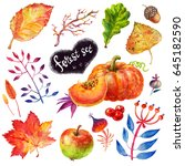 cute autumn watercolor forest... | Shutterstock . vector #645182590