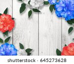 red  white and blue flower... | Shutterstock . vector #645273628