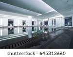 luxury swimming pool part of... | Shutterstock . vector #645313660