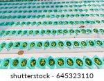 organic hydroponic vegetable... | Shutterstock . vector #645323110