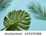 green leaves isolated | Shutterstock . vector #645339388