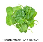 pile of watercress leaves ... | Shutterstock . vector #645400564