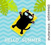 hello summer. black cat... | Shutterstock .eps vector #645444460