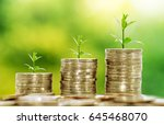coins stacks on table with tree ... | Shutterstock . vector #645468070