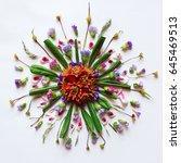 flower mandala flat lay... | Shutterstock . vector #645469513
