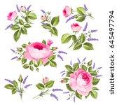 vintage rose set. wedding... | Shutterstock .eps vector #645497794