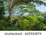 chamarel waterfall in the... | Shutterstock . vector #645534874