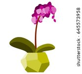 vector illustration with orchid ...   Shutterstock .eps vector #645573958