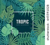 tropic leaves background with... | Shutterstock .eps vector #645591028