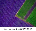 aerial view of lavender field.   Shutterstock . vector #645592213