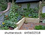 edible playground courtyard... | Shutterstock . vector #645602518