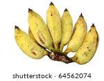 Cultivated banana ripe - stock photo